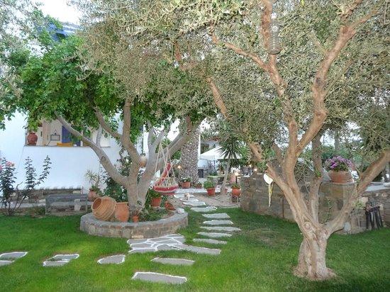 Pension Sofia : Vue du jardin, au petit-déj