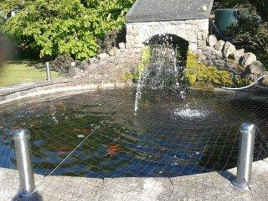 The Old Rectory: Fish Pond