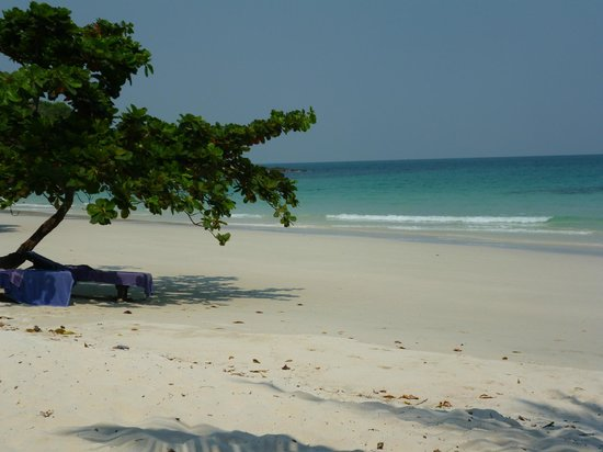 Paradee Resort & Spa Hotel: beach