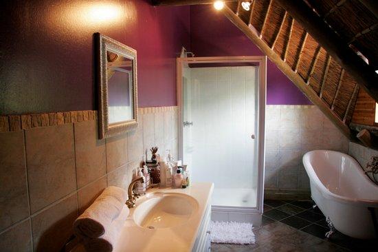 Midrand Wild Goose B&B: bathroom / shower en~suite