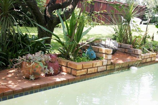 Fabulous swimming pool Midrand Wild Goose B&B