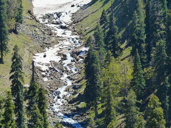Sinthan Top : Birth of a river from snow