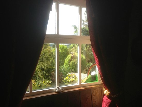 Carr House Farm Bed and Breakfast: View from window