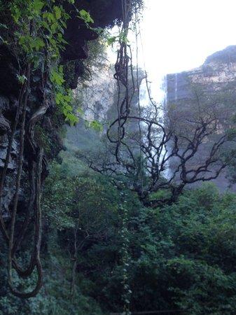 Karkloof Safari Spa: the waterfall