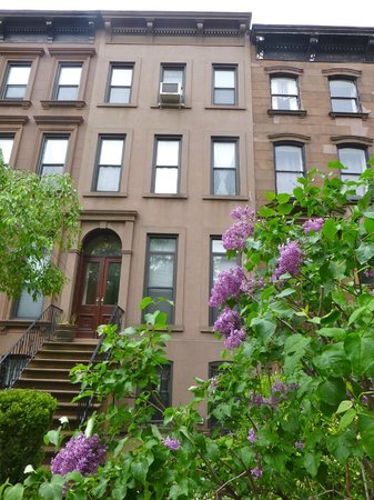 Carroll Gardens (Brooklyn) - 2018 All You Need to Know BEFORE You Go ...