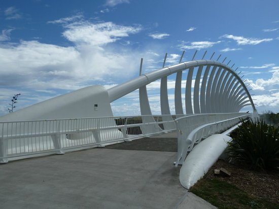 Coastal Walkway: Te Rewa Bridge