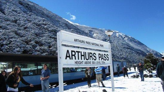 Arthur's Pass Hiking & Tranz Alpine One Day Tour: Arthur Pass