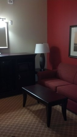 BEST WESTERN PLUS First Coast Inn & Suites: couch, fridge and micro