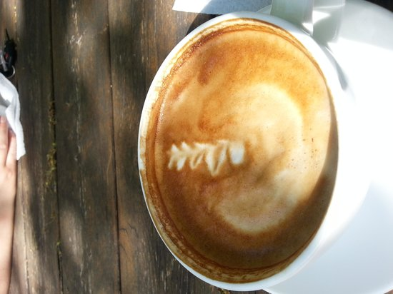 Higher Grounds Trading Co.: Everyone loves latté art, surely?