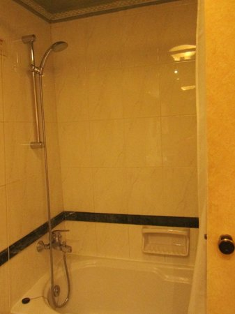 Divani Palace Acropolis: Shower