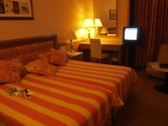 ديفاني بالاس أكروبوليس: Room