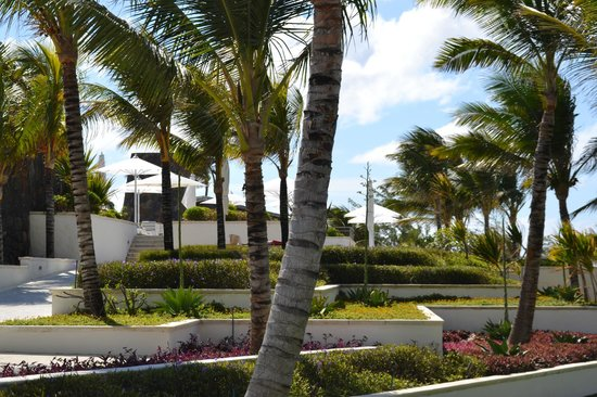 Long Beach Golf & Spa Resort: Jardines