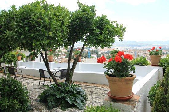 Carmen de la Alcubilla del Caracol: a terrace