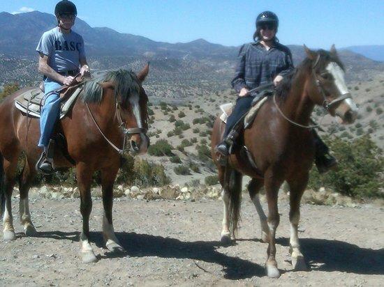 Casa Cuma Bed & Breakfast: Broken Saddle horseback riding