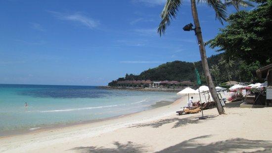 Impiana Resort Chaweng Noi : plage hotel