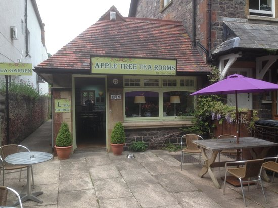 Apple Tree Tea Rooms: Best cakes in Minehead