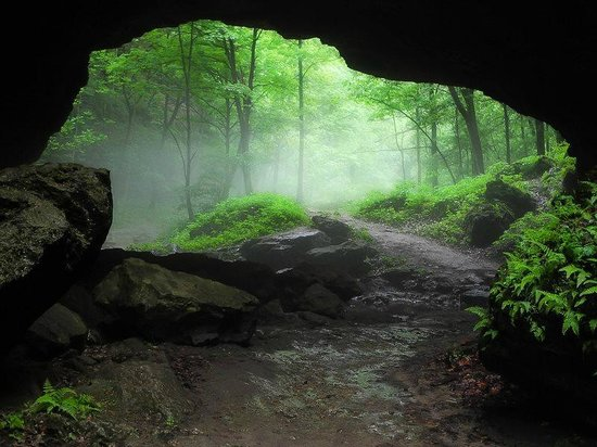 Maquoketa Caves State Park: Foggy forest under biggest rock bridge in ...