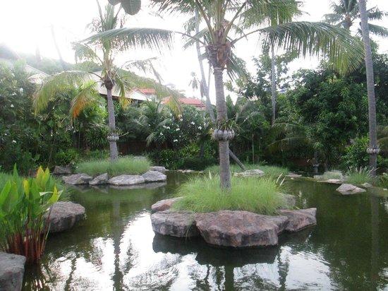Melati Beach Resort & Spa : hotel