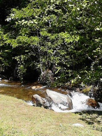Coopers creek trout farm picture of cooper creek trout farm pond bryson city tripadvisor - Trout farming business family mountains ...