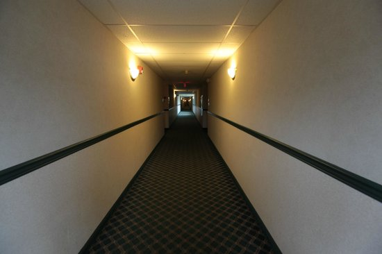 Hotel Carlisle: Long, Scary Hallways that smell very musty
