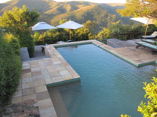 Camp Figtree: Swimming Pool
