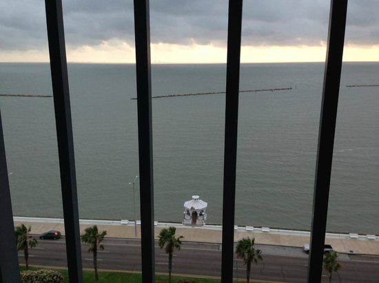Omni Corpus Christi Hotel: Nice view from our balcony.
