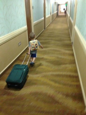 Omni Corpus Christi Hotel: Boo!  Time to go home.  Our 3 year old rolling a suitcase down the hall.