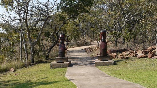 Zwahili Private Game Lodge & Spa: outside area near the pool