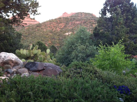 Sedona Views Bed and Breakfast照片