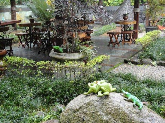 Pousada D'Pillel: Vista do quarto de frente ao Jardim - 5