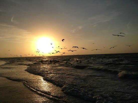 Sanibel Arms Condominiums: Beautiful sunrise on the beach just outside the condo