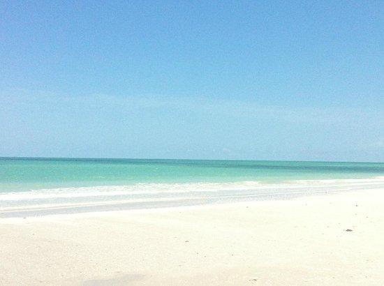 Sanibel Arms Condominiums: Beach!