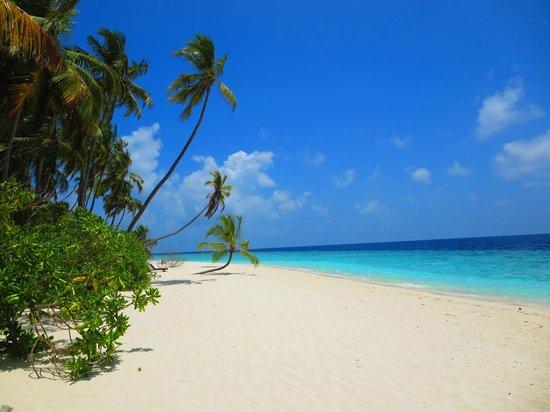 Filitheyo Island Resort: unser Strandabschnitt