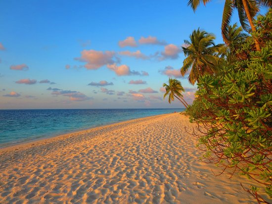 Filitheyo Island Resort: Nordseite Strand