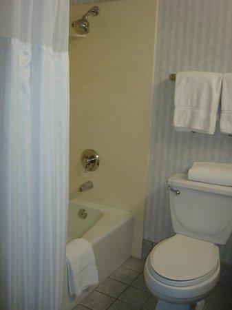 Radisson Hotel San Diego - Rancho Bernardo: Bathroom.