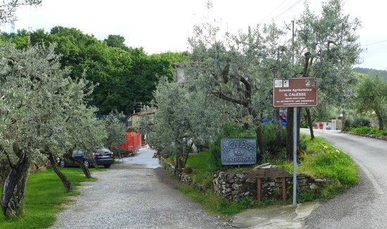 Agriturismo Il Calesse: Entrance
