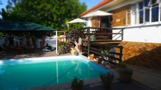 Cardboard Box Hostel: sehr cooler pool und bar