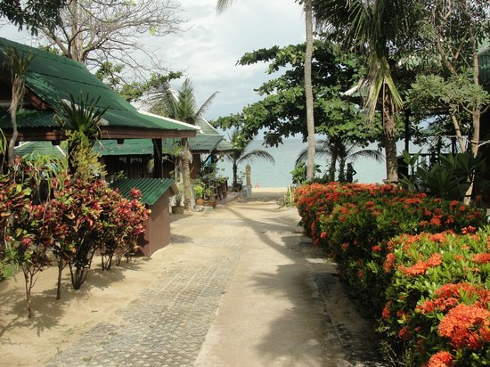 Lamai Coconut Beach Resort: vista dalla stradina interna