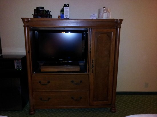 Holiday Inn Washington College Park: Television