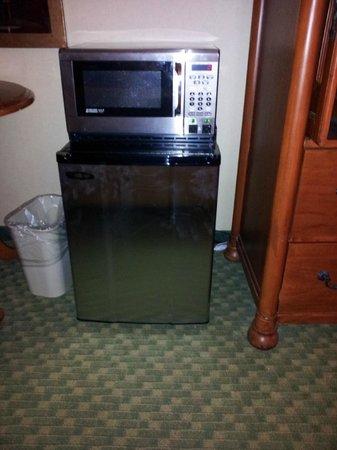 Holiday Inn Washington College Park: Microwave and fridge
