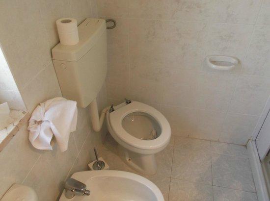 Hotel Villa Pirotta: WC rotto