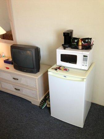 Daytona Inn: Fridge and microwave in room.