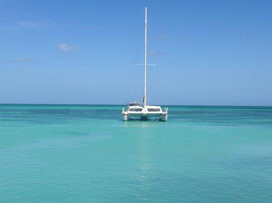 Hotel Riu Palace Aruba: Paradise