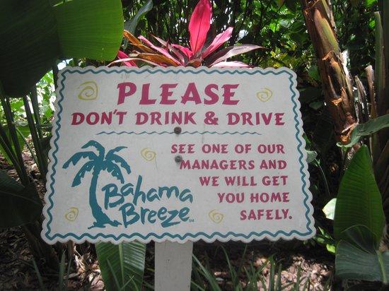 Bahama Breeze: interesting!