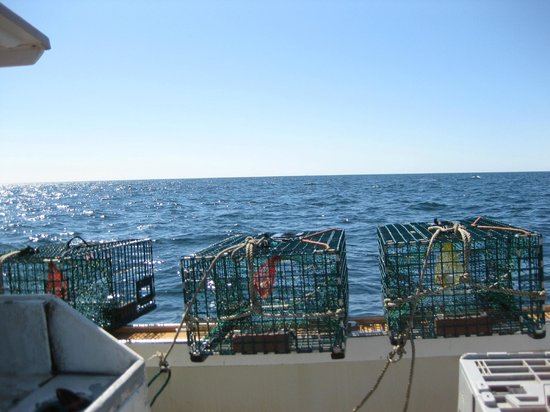 Four Mile Lobster: here are three of the four hundred traps that help us to make an amazing fresh lobster roll