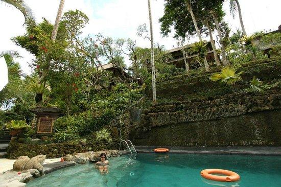 Hotel Tjampuhan & Spa: Main Pool