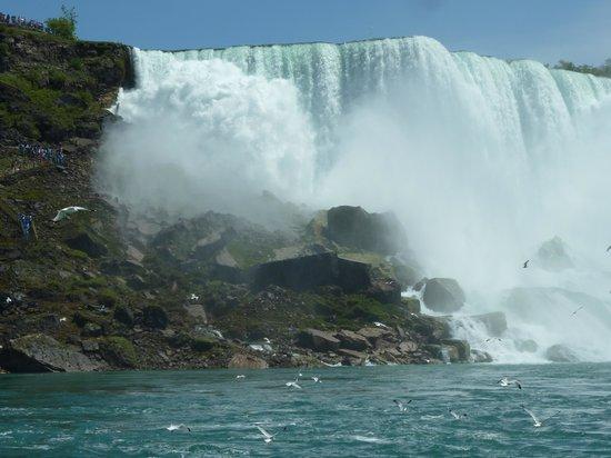 King Tours: Niagra Falls