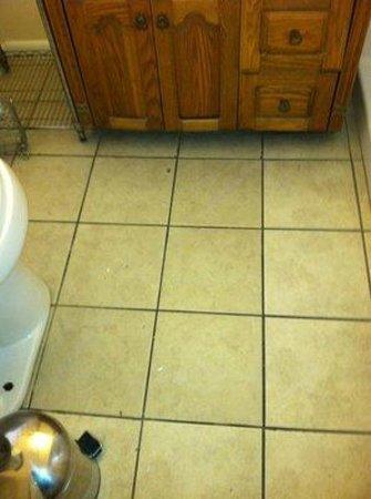 Dauphin Island Harbor House: anyone for a dirty floor