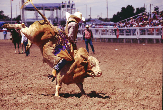 You can see some of the best rodeo action at Cheyenne Frontier Days always held the last full we