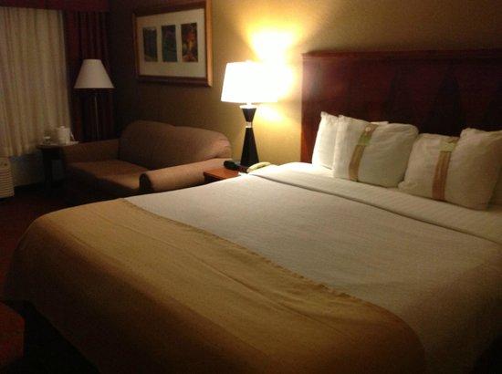 Holiday Inn Asheville - Biltmore East: Room
